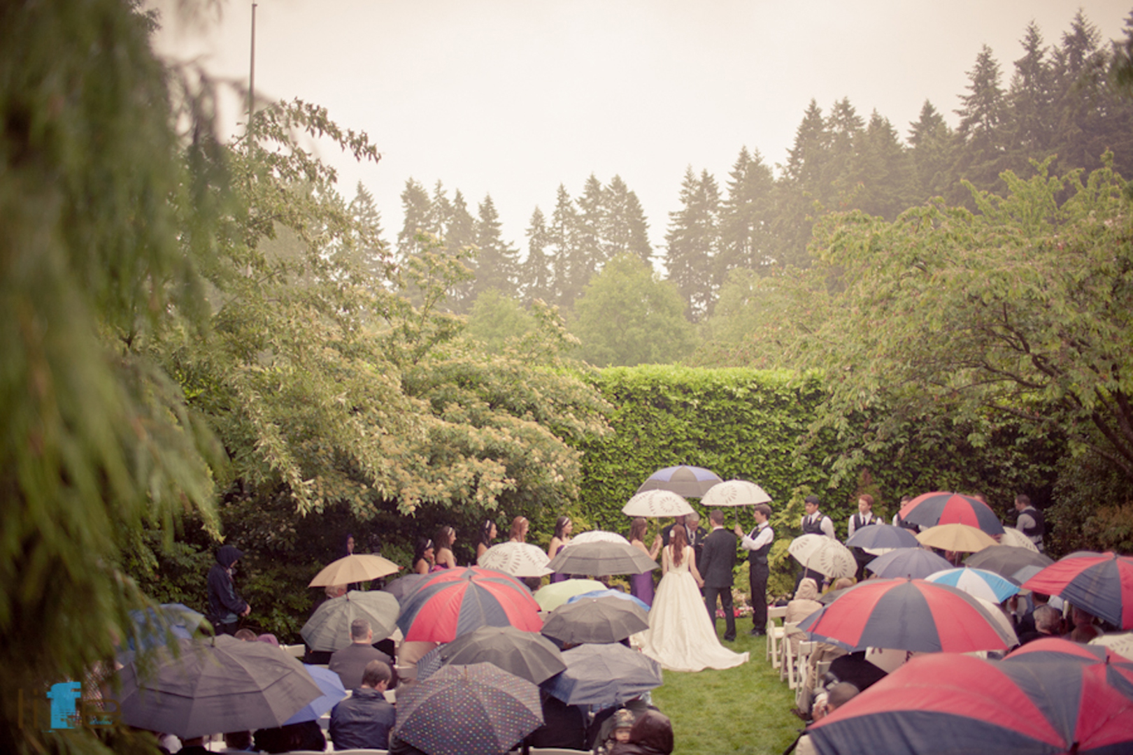 Wedding Photographer Anna and Brian Wedding Photos in Seattle by Life Studios Inc.