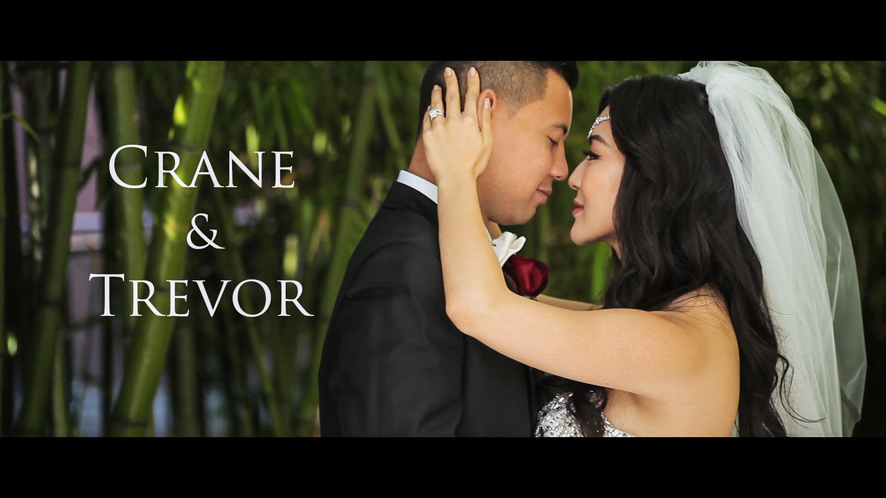 Wedding Videography Crane and Trevor Same Day Edit Video